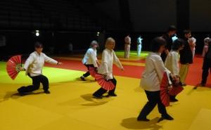 inst judo1