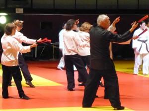 ints judo 3